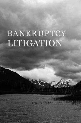 bankruptcy litigation